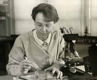 Black and white photo of Barbara McClintock in her lab in 1947, courtesy of the Smithsonian