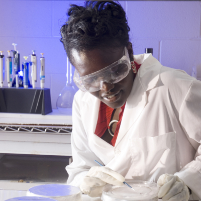 2007-08 American Fellow Esther Ngumbi working in her lab