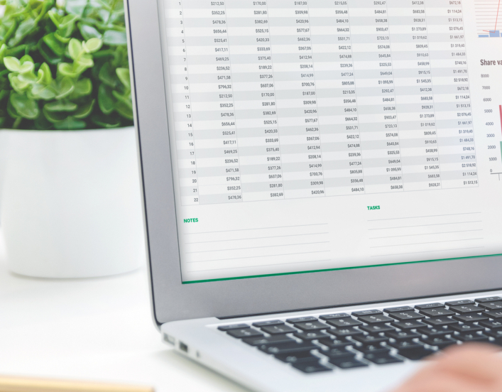 A pair of hands using spreadsheet on a laptop